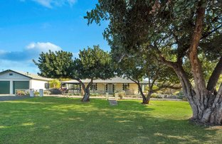 Picture of 614 Lindsay Park Road, Moculta SA 5353