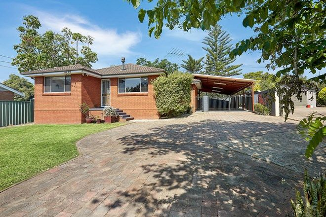 Picture of 39 Helvetia Ave, BEROWRA NSW 2081