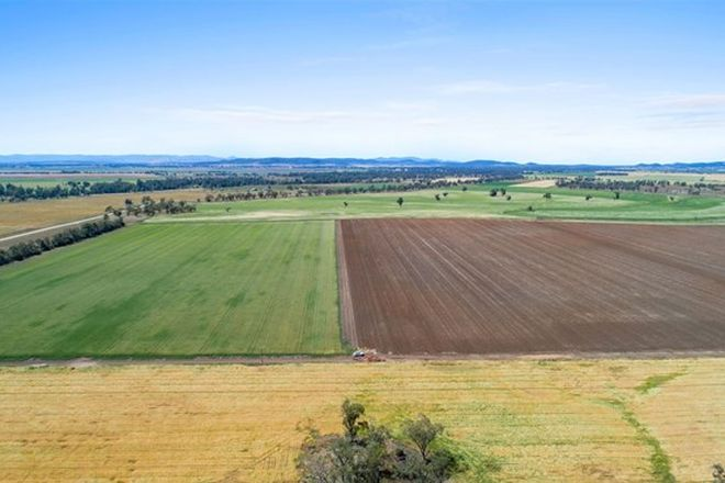 Picture of 1200 Old Narrabri Road, NARRABRI NSW 2390
