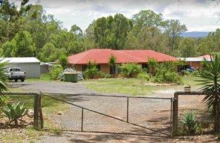 Picture of 41 Leopardwood Road, Cedar Grove QLD 4285
