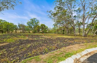 Picture of Lot 29 Fitton Road, Hodgson Vale QLD 4352