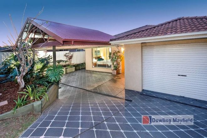 3 Shelley Close, MAYFIELD NSW 2304