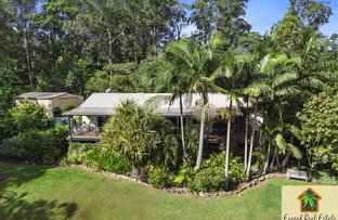 Picture of 18 Bilby Place, Mooloolah Valley QLD 4553