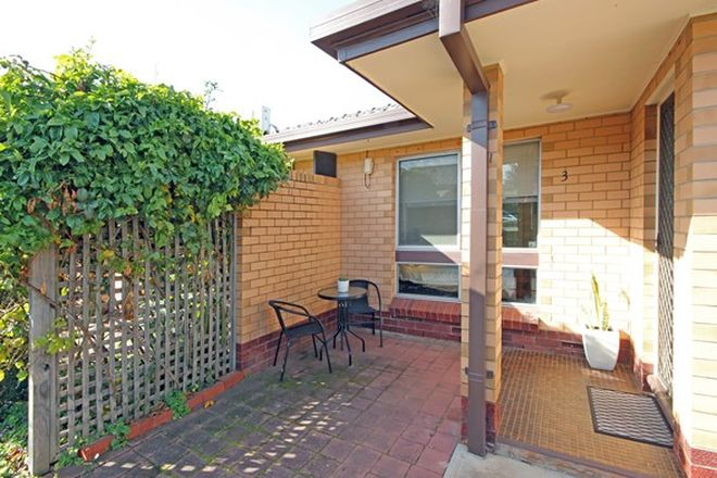 Picture of 3/11 Dudley Street, DAW PARK SA 5041
