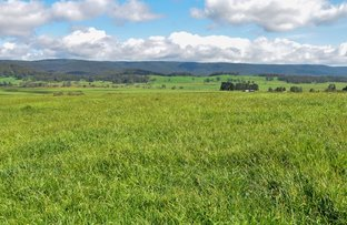 Picture of 747 Upper Yarrowitch River Road, Yarrowitch NSW 2354