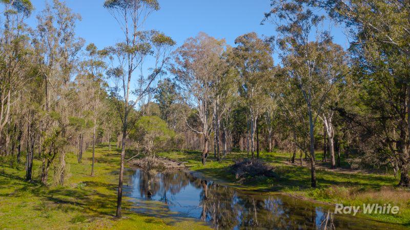 119 Grays Road, Halfway Creek NSW 2460, Image 0
