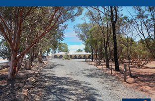 Picture of 446 Riverview Road, Hilltown Viaduct, Clare SA 5453