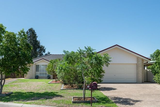 Picture of 12 Daniel Avenue, RUTHERFORD NSW 2320