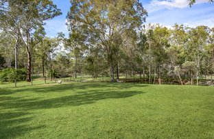 Picture of 243-247 Buccan Road, Buccan QLD 4207