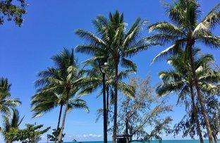 Picture of Lot 38 Argentea Boulevard, Palm Cove QLD 4879