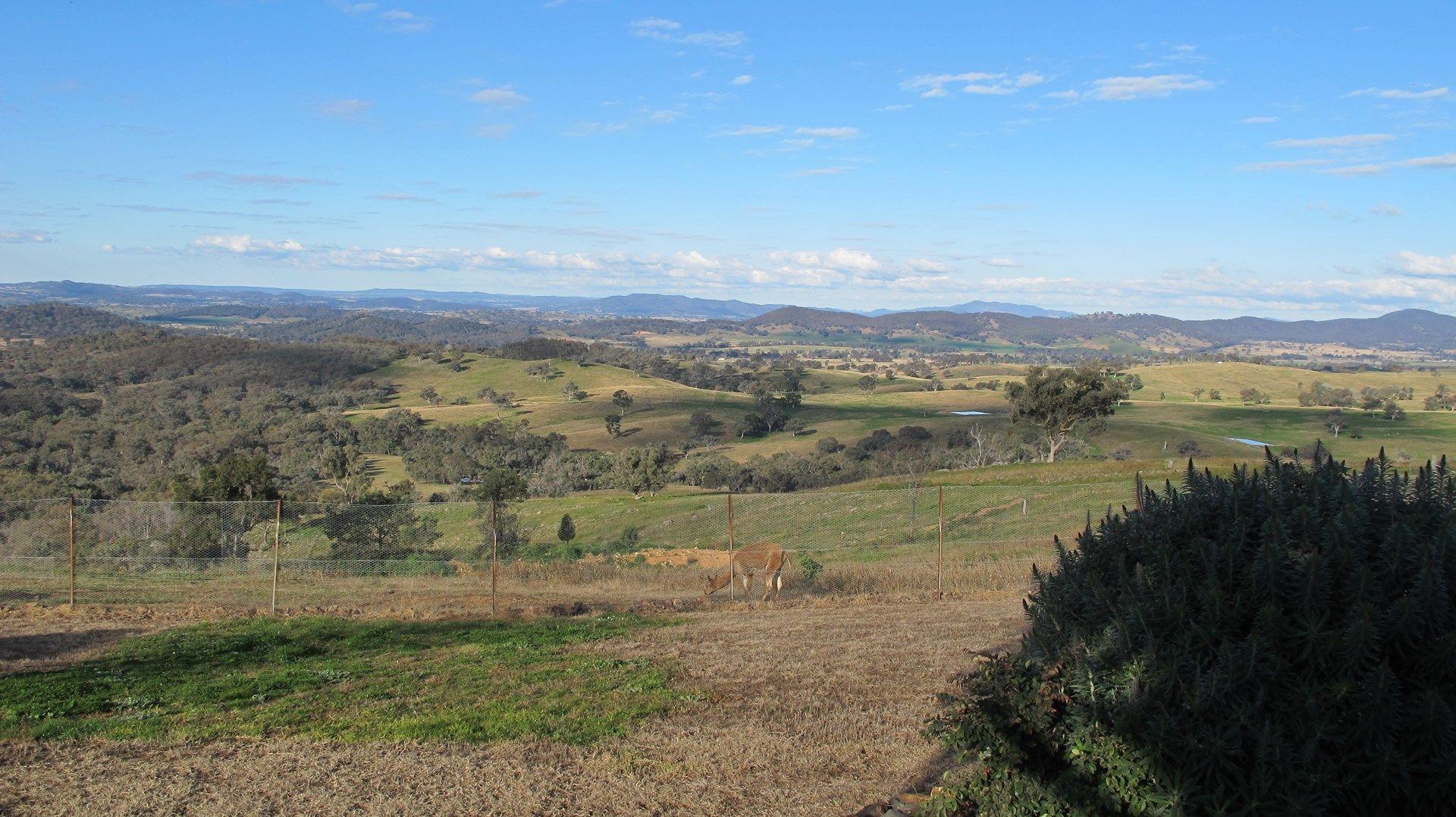 267 Upper Piambong  Road, Piambong NSW 2850, Image 0
