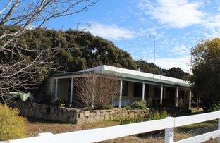 23 Silent Grove Road, Torrington NSW 2371