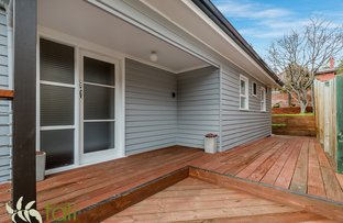 Picture of 11 Cato Avenue, West Hobart TAS 7000