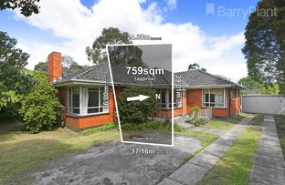 29 Pippin Avenue, Glen Waverley VIC 3150