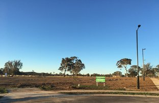5 Quoll Place, Throsby ACT 2914