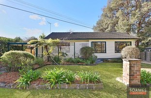 Picture of 16 Clarinda Street, Hornsby NSW 2077