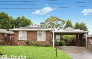 Picture of 25 Yarana Street, Ferntree Gully VIC 3156