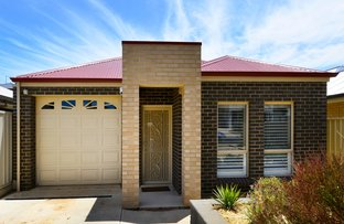 Picture of 7 Auricchio Avenue, St Marys SA 5042