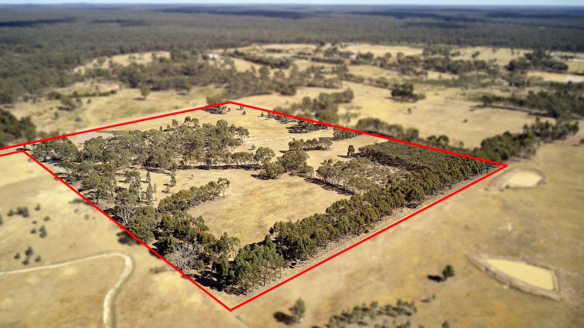 Lot 2/1275 McIvor Highway, Longlea VIC 3551, Image 1