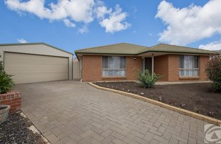 Picture of 10 Oakwood Place, Blakeview SA 5114