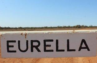 Picture of . Eurella, Ivanhoe NSW 2878