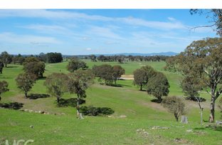 Picture of 'Windsor Park' 122 Kent Road, Orange NSW 2800