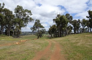 Picture of Wondalup Lot 4195 Lower Hotham Rd, Quindanning WA 6391