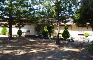 Picture of Lot 104 Stebonheath Road, Munno Para Downs SA 5115