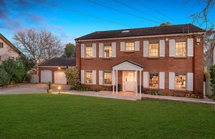 Picture of 48 Hayle Street, St Ives NSW 2075