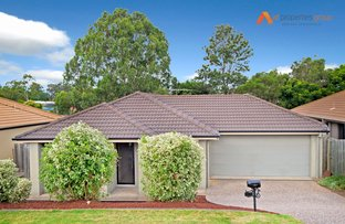 Picture of 13 Bosswood Court, Yamanto QLD 4305