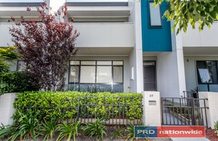 Picture of 49 Thornton Drive, Penrith NSW 2750