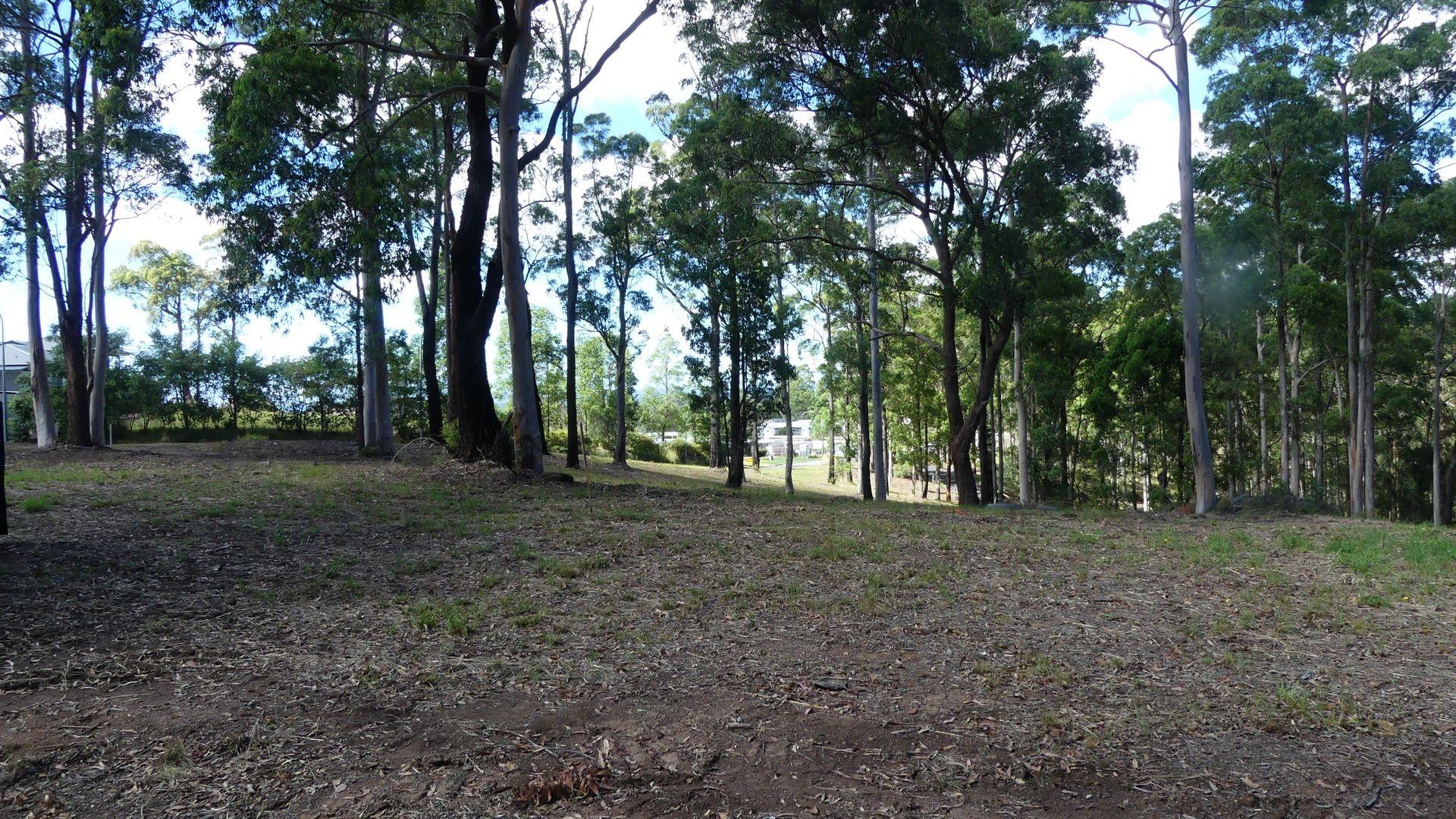 4/131 Tallwoods Drive, Tallwoods Village NSW 2430, Image 1