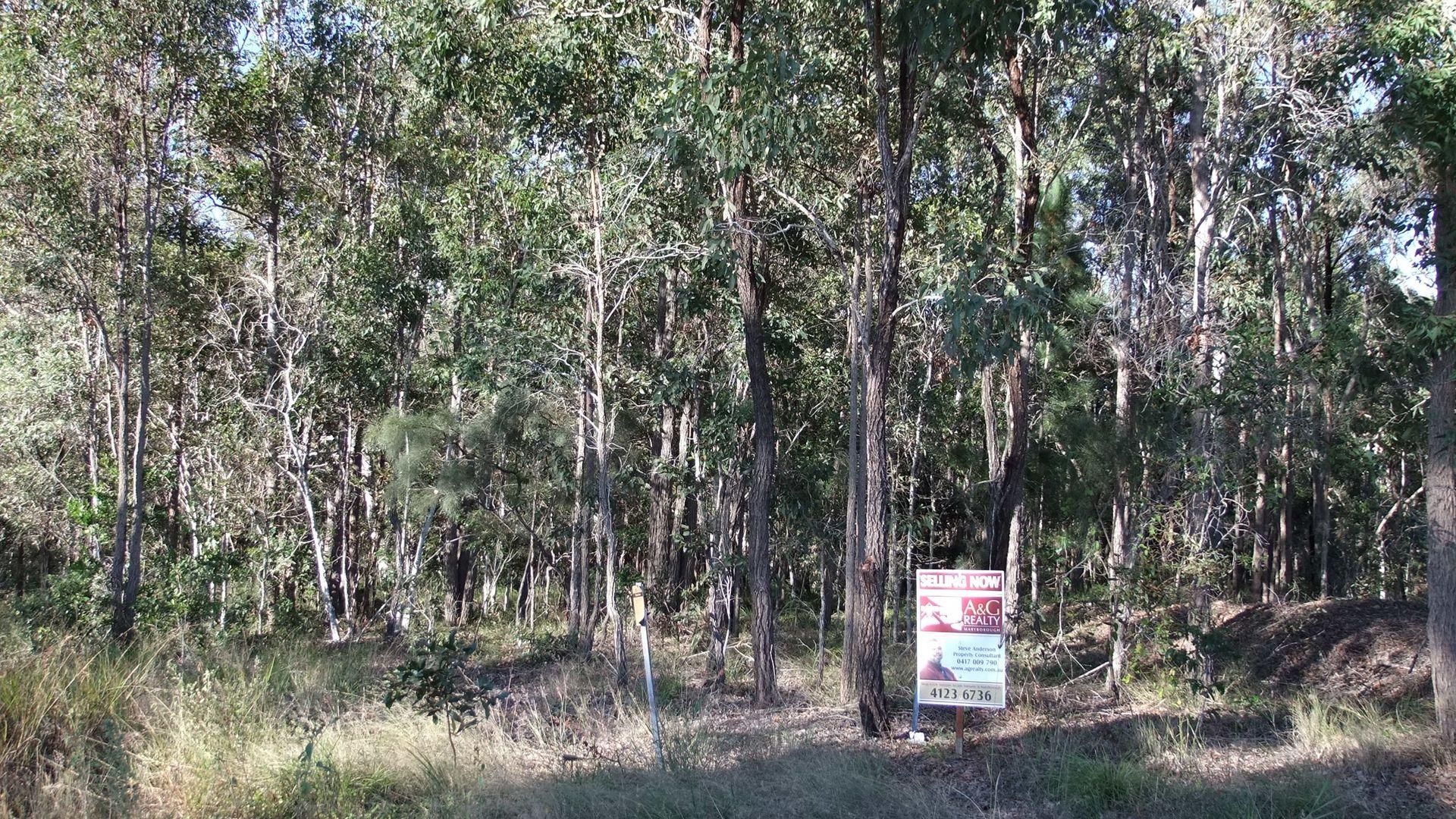 Lot 8 Bidwill Road, Magnolia QLD 4650, Image 2