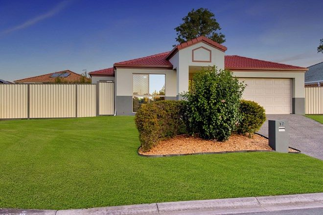Picture of 17 Bedivere Drive, ORMEAU QLD 4208