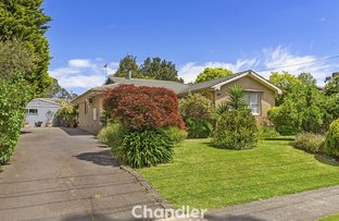 Picture of 11 Mt Morton Road, Belgrave South VIC 3160