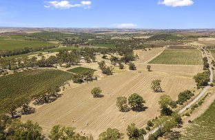 Picture of 43-46 Sheoak Road, Watervale SA 5452