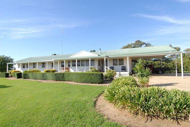 Picture of 40 FLANAGANS LANE, DENILIQUIN NSW 2710