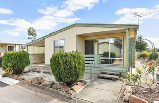 Picture of Site 197 Cassia Street, Hillier SA 5116