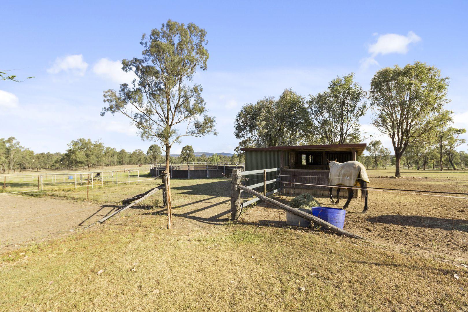 292 Kuss Road, Lower Mount Walker QLD 4340, Image 0