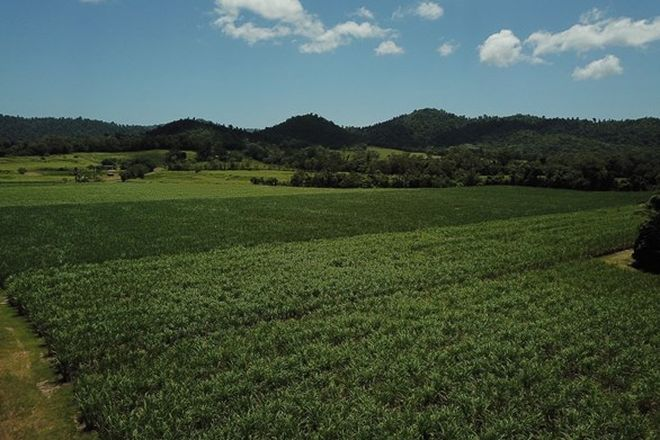 Picture of LOT 3/2223 INNISFAIL-JAPOON ROAD, BOMBEETA QLD 4871