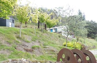 Picture of 10 Lower Cascade Road, Derby TAS 7264