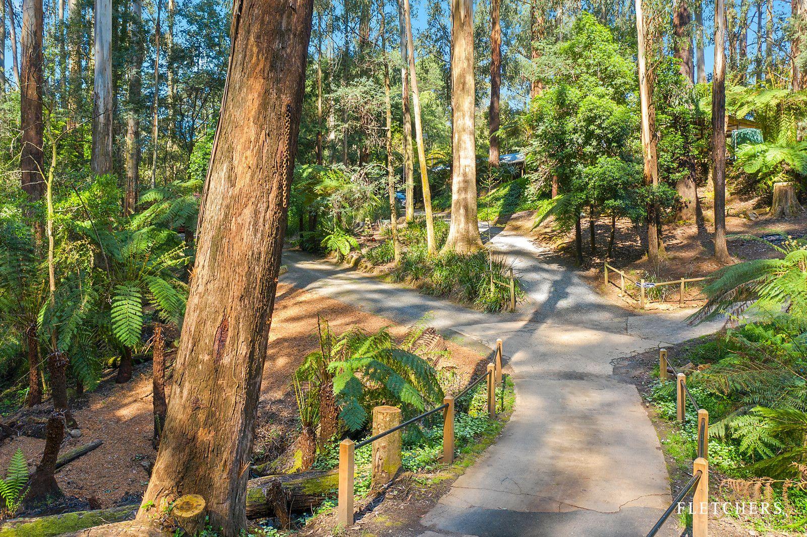10 Fern Glen Avenue, Mount Dandenong VIC 3767, Image 2