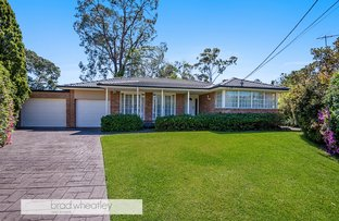 Picture of 3 Trueman Place, North Rocks NSW 2151