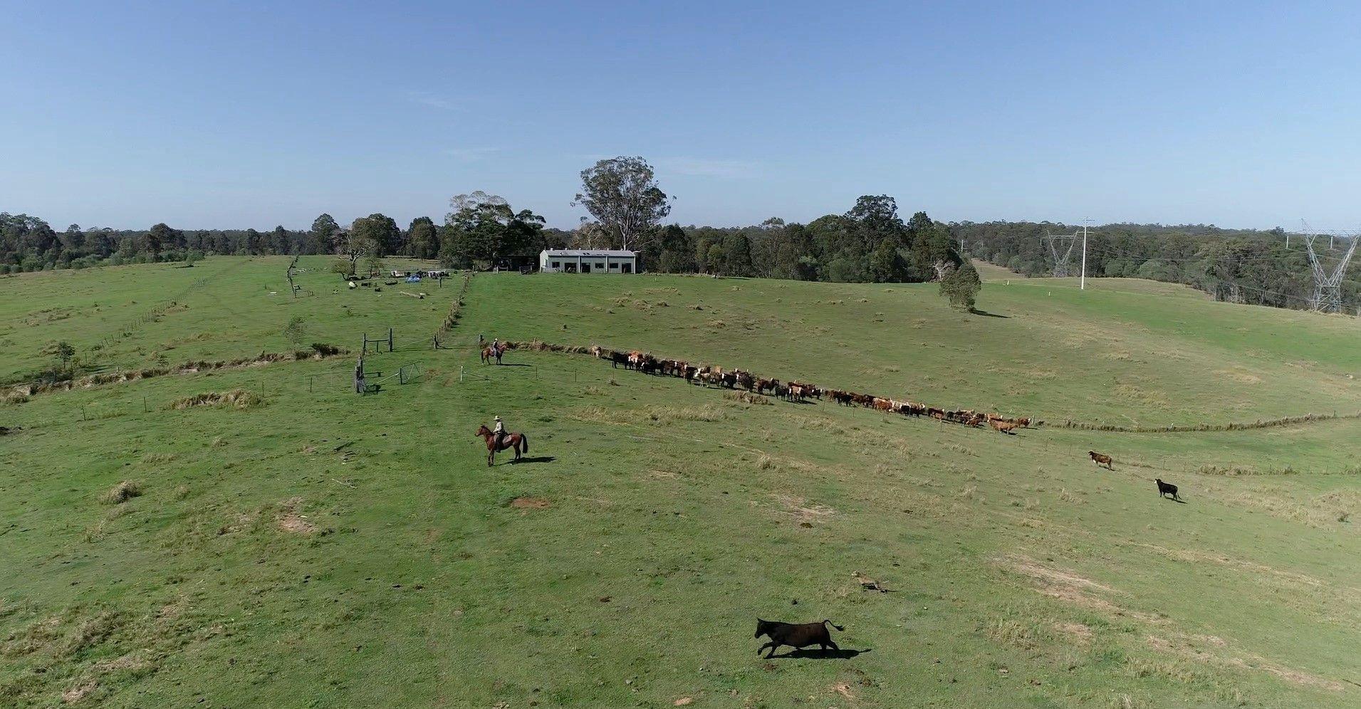 465 Ellangowan Myrtle Creek Road, Ellangowan NSW 2470, Image 0