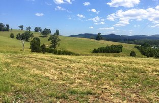 Picture of 2 Wattley Hill Road, Wootton NSW 2423
