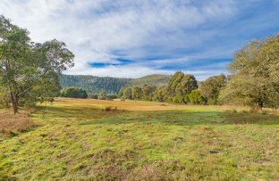 Picture of 16 Seal Rock Road, Buxton VIC 3711