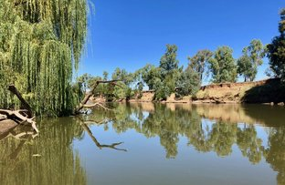 Picture of NAMOI FARM, Narrabri NSW 2390