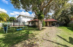 Picture of 4 Sycamore Street, Mudjimba QLD 4564
