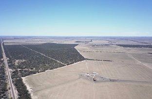 Picture of 3270 Flinders Hwy, Haslam, Streaky Bay SA 5680