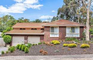 Picture of 24 Catharina Street, Flagstaff Hill SA 5159
